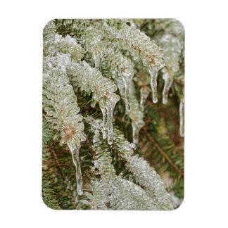 Agujas heladas del pino imán de vinilo