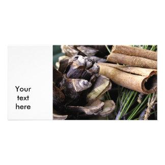 Agujas y canela del pino tarjeta fotografica