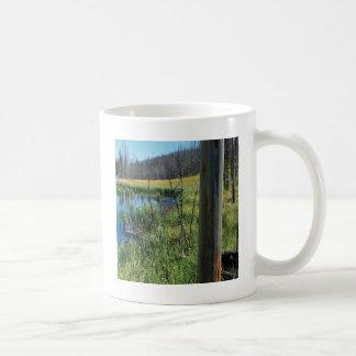 Agujero de agua del desierto de la reserva de taza