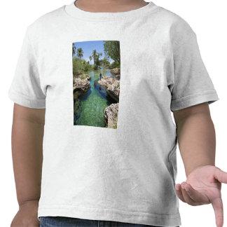 Agujero del cocodrilo, ciudad negra del río, Jamai Camisetas