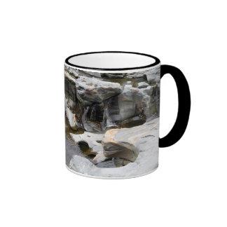 Agujeros del pote en las caídas de Shelburne, mA Tazas De Café