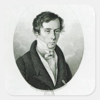 Agustín Jean Fresnel 1825 Colcomanias Cuadradas