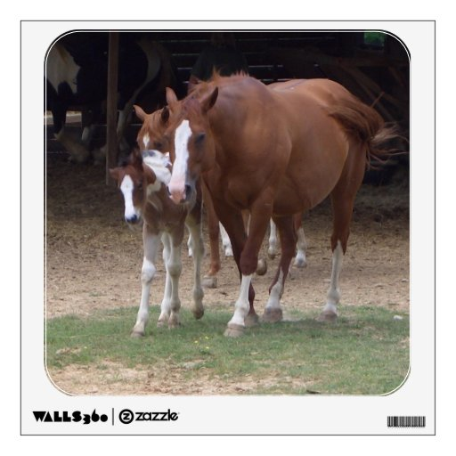 AH- Horse and Foal Wall Decal