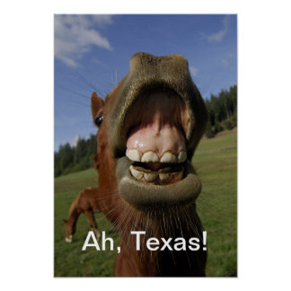 Ah Texas!  Horse flapping gums Poster