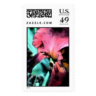 Ah the Iris! Stamps