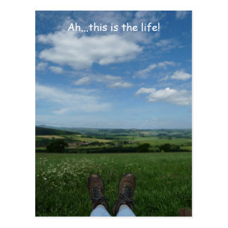 """Ah, this is the life"" Postcard"