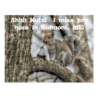 Ahhh Nuts! Postcards
