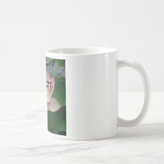 ahimsa vegan classic white coffee mug