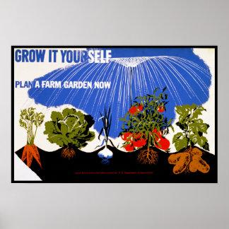 Ahora crézcalo usted mismo planta del ~ un jardín  póster