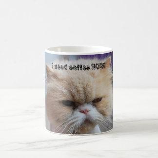 Ahora necesito la taza de café del gato persa del