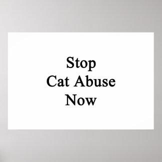 Ahora pare el abuso del gato póster