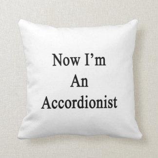Ahora soy acordeonista cojines
