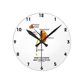 Ahora usted sabe porqué tengo que ir (la diuresis) reloj redondo mediano