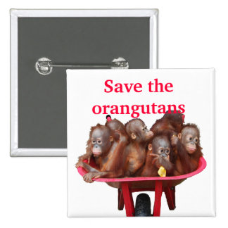 Ahorre a los bebés lindos de los orangutanes pin cuadrado