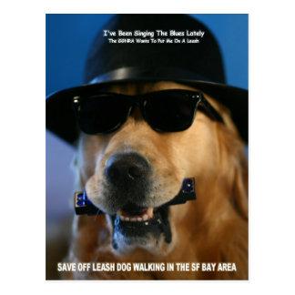 Ahorre a senador que camina Feinstein del perro Tarjeta Postal