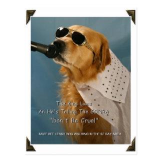 Ahorre a senador que camina Feinstein del perro Tarjetas Postales
