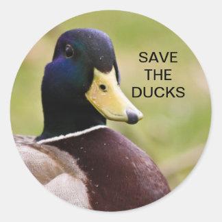 Ahorre al pegatina de los patos