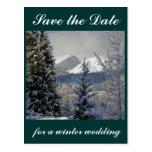 Ahorre el boda del invierno de la fecha postal