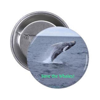 Ahorre el botón de las ballenas pins