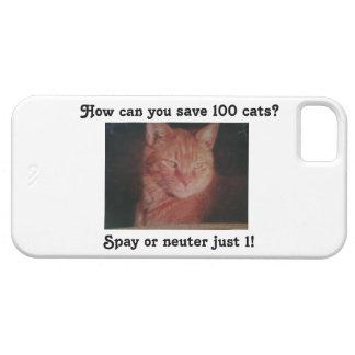 Ahorre el caso del iPhone de 100 gatos iPhone 5 Protectores