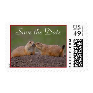 Ahorre el franqueo de la postal de la fecha