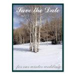 Ahorre el invierno de la fecha que casa los árbole postales