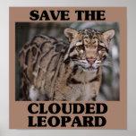 Ahorre el leopardo nublado poster