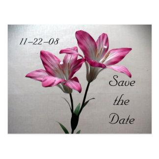 Ahorre el lirio del rosa de la fecha tarjeta postal