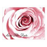 Ahorre el rosa nupcial de la postal de la fecha