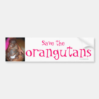 Ahorre la especie en peligro: orangutanes pegatina de parachoque