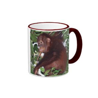Ahorre la fauna: orangutanes lindos en la selva taza de dos colores