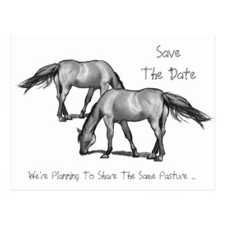 Ahorre la fecha: Dos caballos: El conseguir enganc Tarjeta Postal