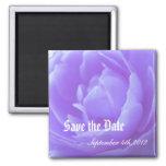 Ahorre la fecha, flor color de rosa púrpura imán para frigorifico