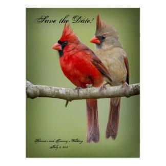 Ahorre la fecha para nuestro boda/pares cardinales postales