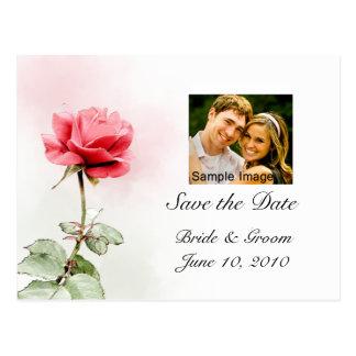 Ahorre la fecha - postal de la foto del rosa rojo