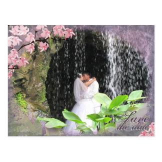 Ahorre la flor de cerezo de la postal del boda de