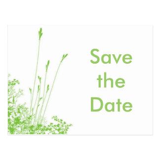 Ahorre la hierba verde de la fecha tarjeta postal