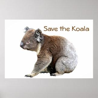 Ahorre la koala póster