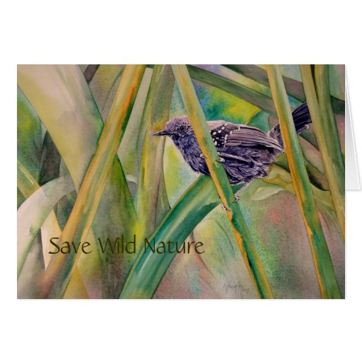 Ahorre la naturaleza salvaje - tarjeta de felicita