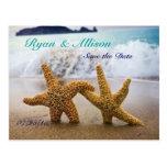 Ahorre la postal de las estrellas de mar de la fec