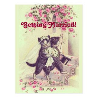 Ahorre la postal de los gatos del boda de la fecha