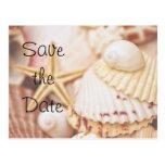 Ahorre la postal del Seashell de la fecha