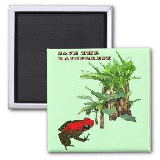 Ahorre la selva tropical imán para frigorifico