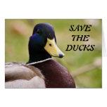 Ahorre la tarjeta de los patos