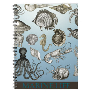 ¡Ahorre la vida marina! Libreta