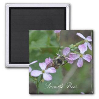 Ahorre las abejas… El rábano florece el imán