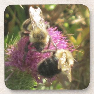 Ahorre las abejas posavasos de bebidas