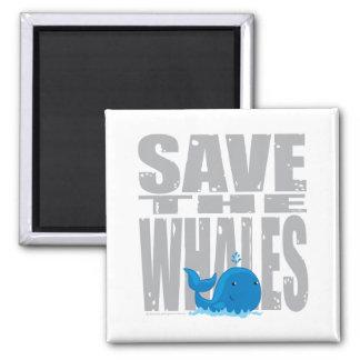 Ahorre las ballenas imán cuadrado