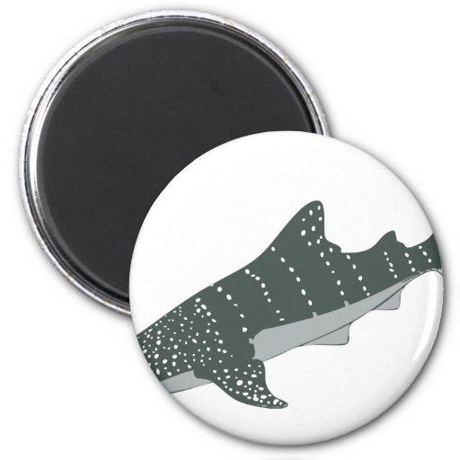 Ahorre las ballenas imanes