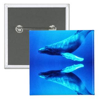 Ahorre las ballenas pins